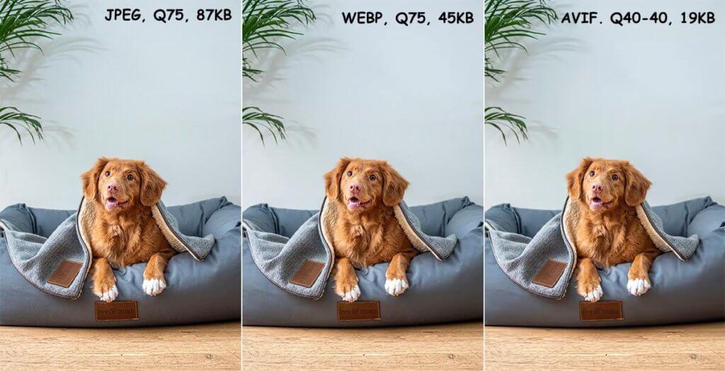 Сравнения качества и веса разных форматов изображений